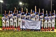 Little-League-Banner